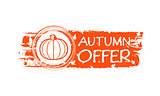 autumn offer drawn banner with pumpkin and fall leaves