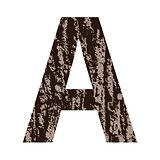 letter A made from oak bark