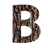 letter B made from oak bark
