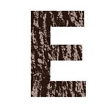 letter E made from oak bark