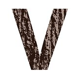 letter V made from oak bark