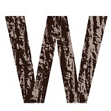 letter W made from oak bark