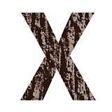 letter X made from oak bark