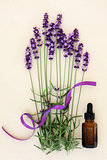Lavender Flower Aromatherapy