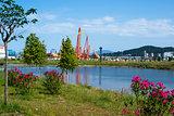 Pond near Sochi park in summer