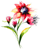 Watercolor illustration of Red flowers
