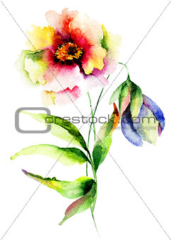 Watercolor illustration of flowers