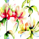 Watercolor illustration of Peony flowers