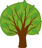 Cartoon deciduous tree. Isolated