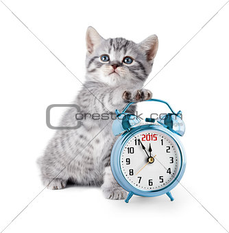 kitten with alarm clock displaying 2015 year
