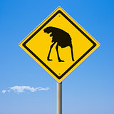 Caution ostrich ahead yellow road sign