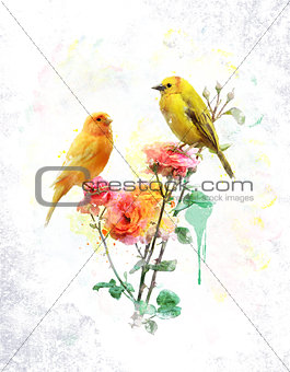 Watercolor Image Of Flowers And Birds