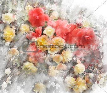 Watercolor Image Of Begonia Flowers