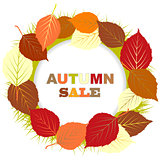 Autumn sale illustration with frame of leaves