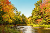Mersey river in fall
