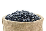 Dried black beans in Sacks fodder
