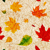 Seamless grunge background with flying autumn leaves
