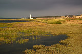 Landscape of wetlands foliage during stormy sky sunset towards l