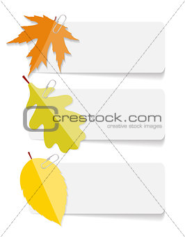 Autumn Leaves Infographic Templates for Business Vector Illustra
