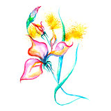 Watercolor flowers - pink iris, splashes, drops on paper or canvas vector