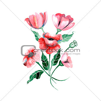 Watercolor flowers - red poppies with leaves, vector