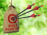 Mobile Marketing - Arrows Hit in Red Target.