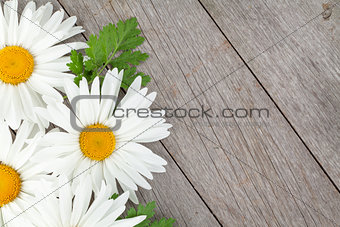 Daisy camomile flowers on wooden background