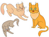 Three funny cartoon cats