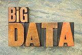 big data in wood type