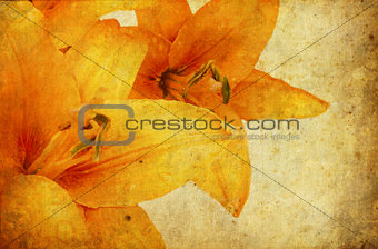 Grunge Lily