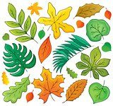 Leaves theme collection 1