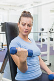 Fit brunette lifting blue dumbbells