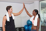 Personal trainer and client high fiving