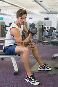 Fit man lifting dumbbells sitting on the bench