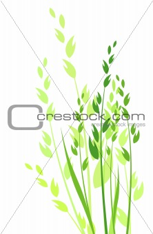grass vector illustration / colored silhouette