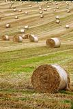 round bales 7