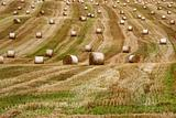 round bales 