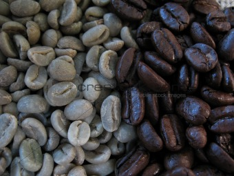 Unroasted and roasted coffee beans