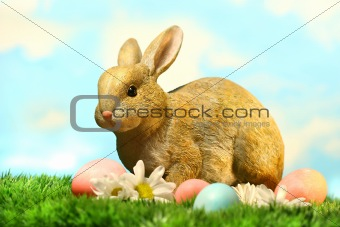 Little brown rabbit in the grass