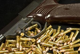 Army Pistol 1
