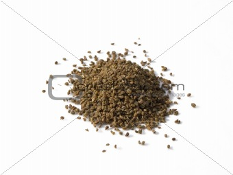 Celery Seed Pile Isolated