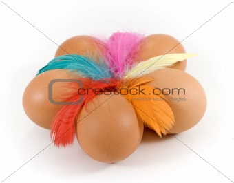 five eggs and colored feathers