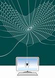spider web computer