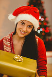 Festive brunette smiling at camera