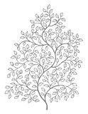 Ornate curly vines and leaf illustration
