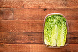 romaine lettuce heart leaves