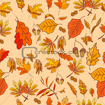 Autumn composition with yellow and red leaves