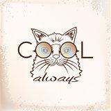 Funny muzzle cat in sunglasses closeup