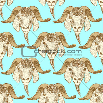 Sketch cute goat head in vintage style
