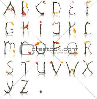 Branch_Autumn_Alphabet